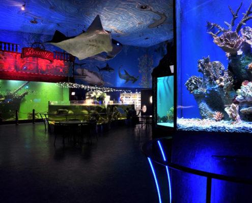 Прага для детей. Океанариум «Морской мир»