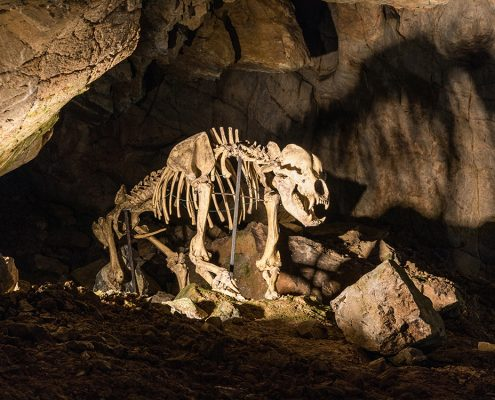 Пещеры Пункевни, Моравский карст